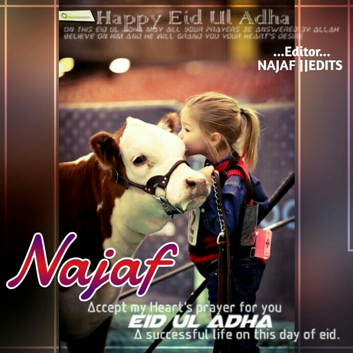 Eid al adha greeting dp m4hsunfo