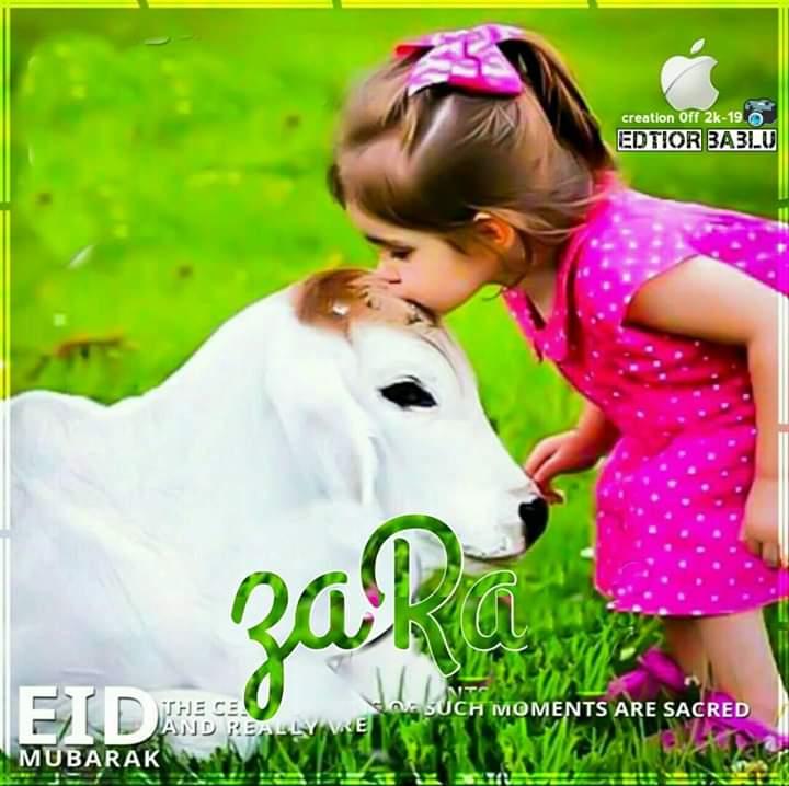 Eid Al Adha Wallpaper Dp Pic Zara Name