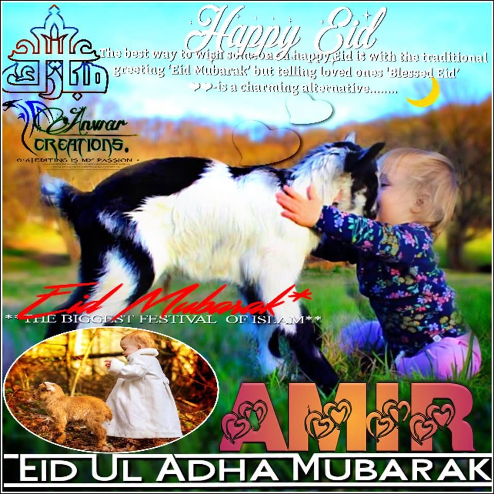 Eid Mubarak To All Muslims Amir Name Dp