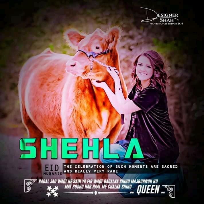 New Eid Ul Adha Sheela Name Dp Pic